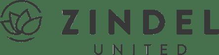 Logo Zindel United (grau)
